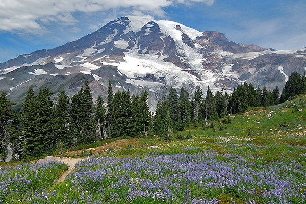 Mount Rainier, Washington