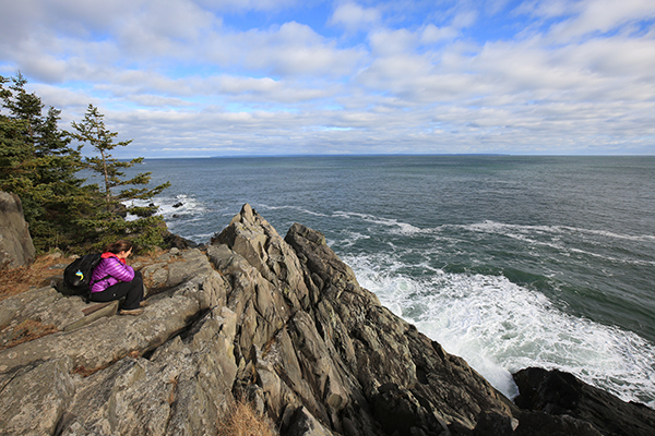 much of Maine's coastline is very rugged