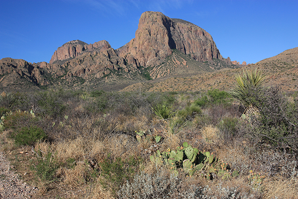 Big Bend National Park scenery