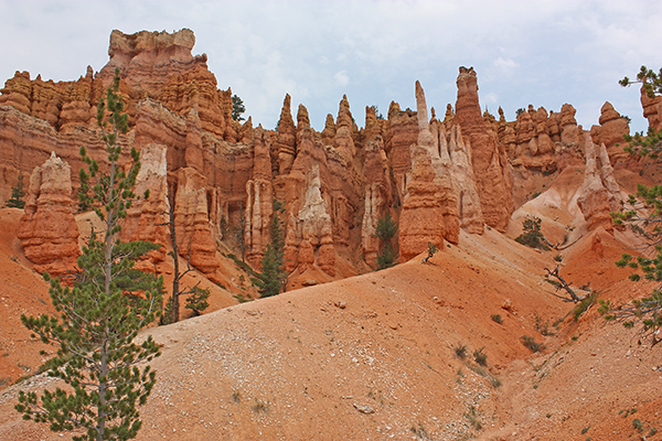 more hoodoos in Bryce Canyon National Park