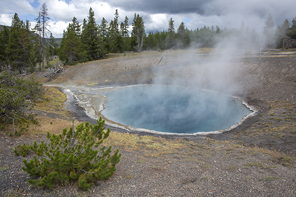 Black Sand Pool, Yellowstone National Park