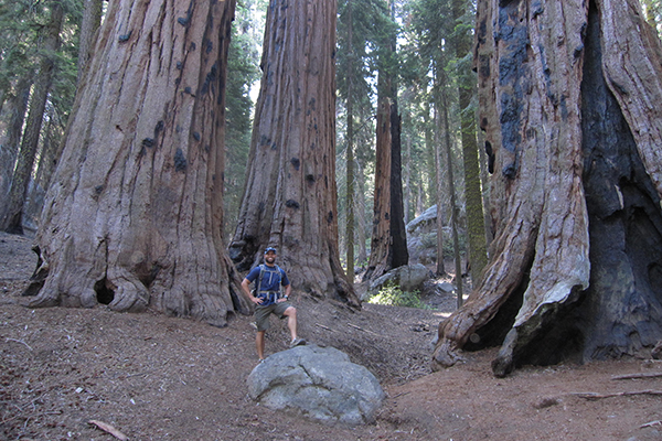 Congress Trail, Sequoia National Park, California