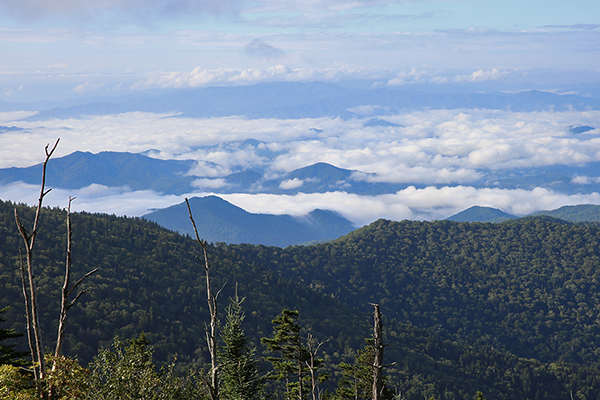 view from the lookout tower atop Clingmans Dome, Tennessee